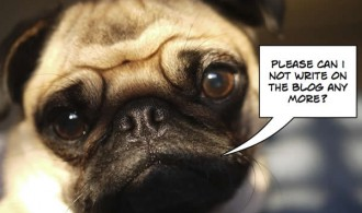 Pug says please