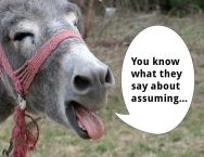 A donkey with a speech bubble talks about assuming.