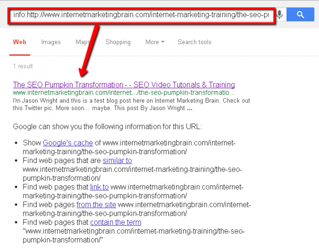 Screenshot of pumpkin SEO experiment ninth