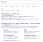 Branded Search Campaign Example - Portent