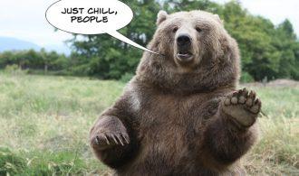 bearchill