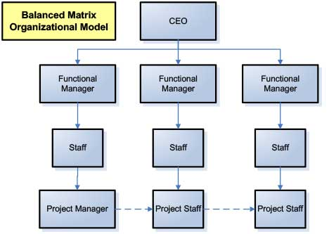 Diagram of a Balanced Matrix Organizational Model for marketing project management