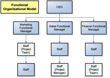 Diagram of a Functional Organizational Model for Marketing Project Management