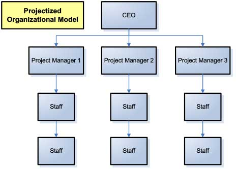 Projectized organizational structure for marketing project management