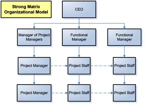 Diagram of a Strong Matrix Organizational Model for marketing project management