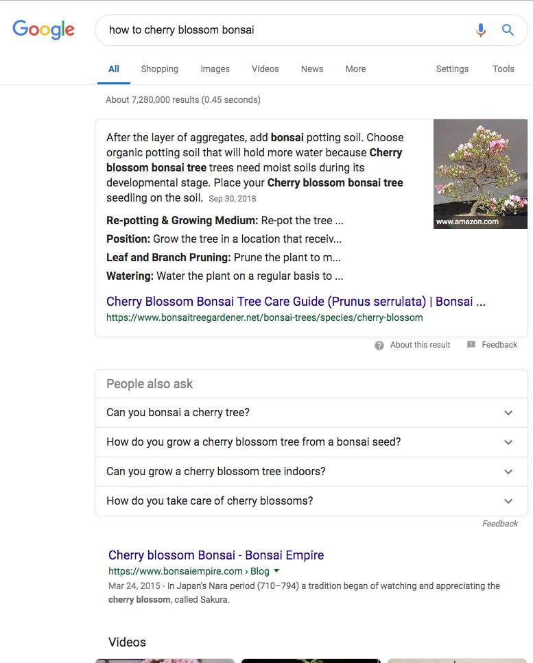 Screenshot of Google Search results for How to cherry blossom bonsai