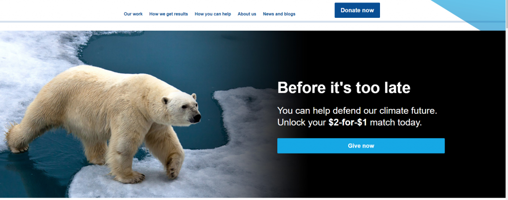 Screenshot of the Environmental Defense Fund's hero image of a polar bear walking on thinning ice