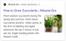 In this example of a search result related to succulents, Google populated the meta description with general text about the best time of year to plant succulents indoors vs. outdoors.