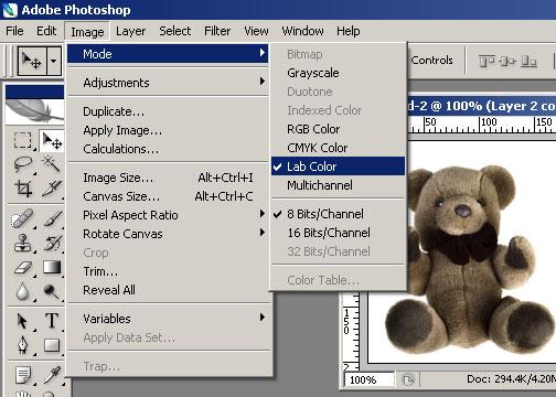 bear-step1.jpg